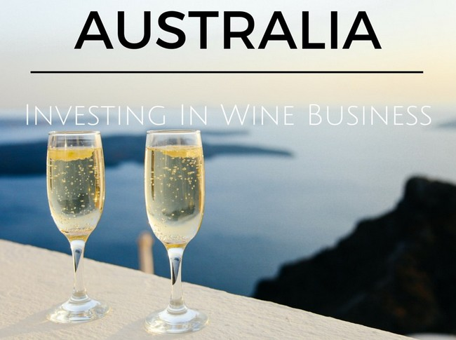 Investing in Wine Business Australia
